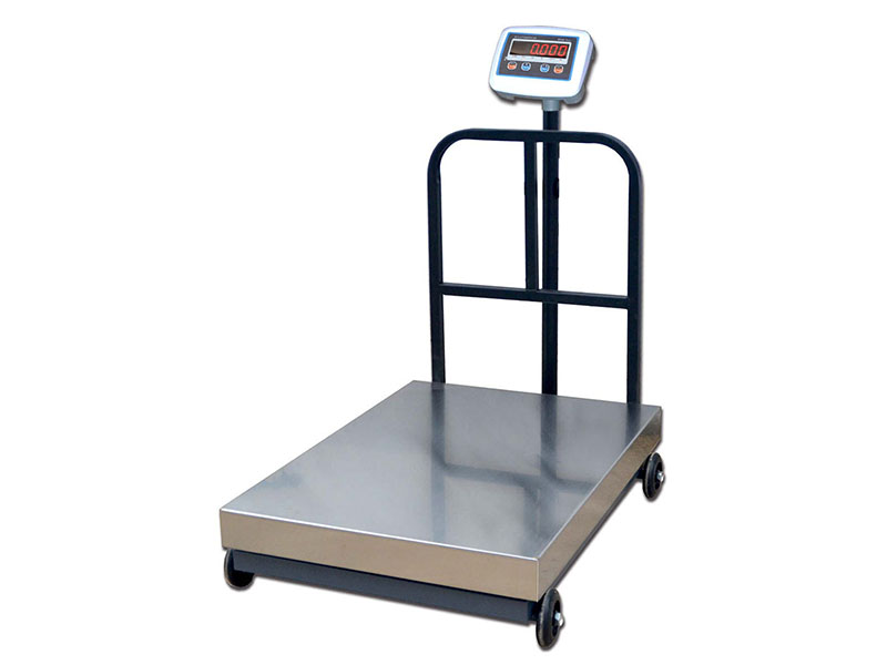Robust Bsr Trolley Weighing Platform Scale With Big Capacity