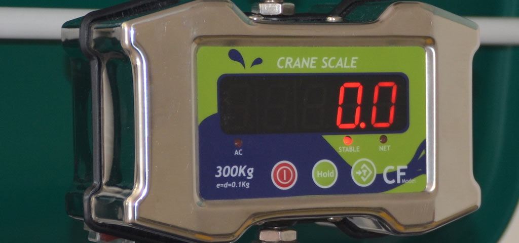 Stainless steel crane scale