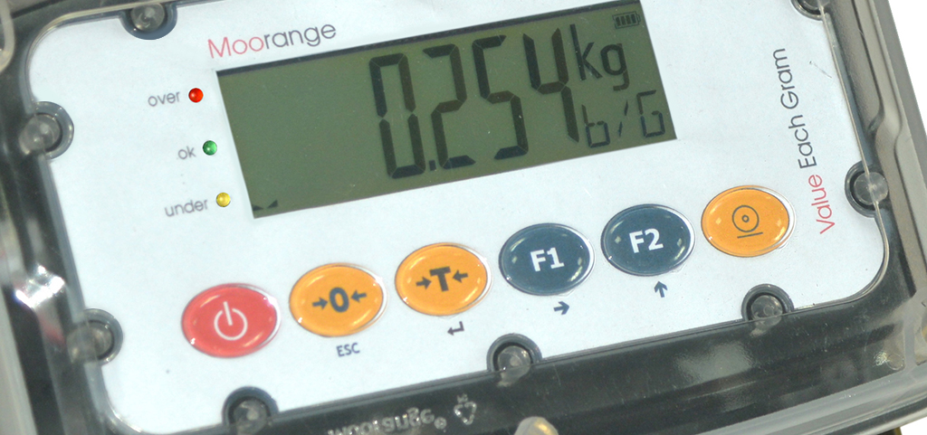 IP69K weight indicator